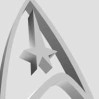 Grey Starfleet Delta